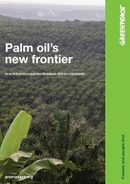 Palm oil's new frontier: How industrial expansion - Greenpeace