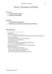 Versuch 1: Aminosäuren und Proteine I