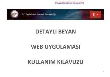detaylı beyan web uygulaması kullanım kılavuzu