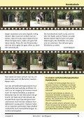 Hundeschule Vermittlung Veranstaltung - Geniushof eV ... - Seite 5