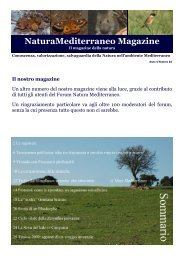 Il nostro magazine - Natura Mediterraneo