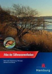 Süßwassermollusken Hamburgs
