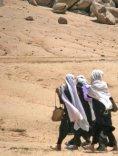 Millenniums-Entwicklungsziele Bericht 2012 - Seite 4