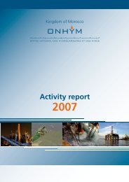 Activity report 2007 - Office National des Hydrocarbures et des Mines