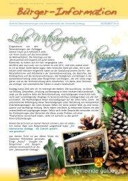 _Bürgerinfo Dezember2010 - Gemeinde Goldegg
