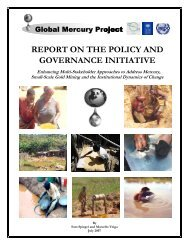 report on the policy and governance initiative - Global Mercury Project