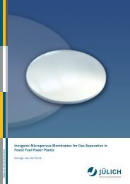 Inorganic Microporous Membranes for Gas Separation in Fossil Fuel ...