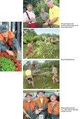 VD52Spezial_633420342838205111.pdf - Seite 5