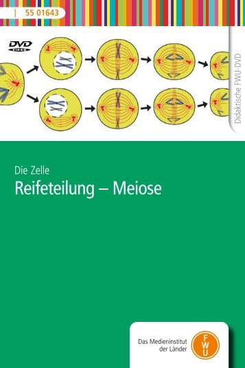 Reifeteilung – Meiose - FWU
