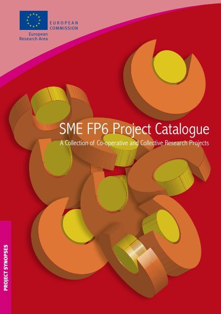 foto de SME FP6 Project Catalogue