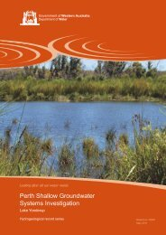 Perth shallow groundwater systems investigation : Lake Yonderup