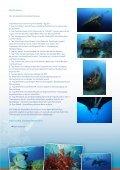 Sden - ab ypten - vierzehn Tage - Omneia - Seite 2