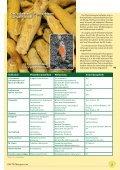 Der pflanzliche Arzneischatz - bei PHYTO Therapie - Seite 5