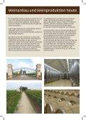 Weinstrassen Serbiens - Seite 5
