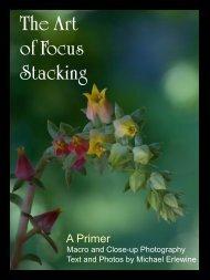 The Art of Focus Stacking - Matrix Software