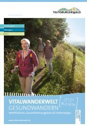 in der vitalwanderwelt - Teutoburger Wald
