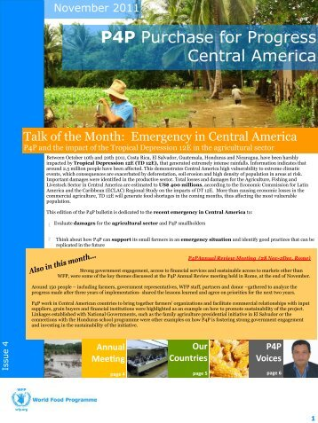 Lessons from accessing finance Guatemala: A year with ... - ReliefWeb