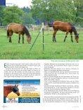 Genau so ergeht es auch den Pferden, die des Boxen - iWEST - Seite 3