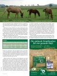 Genau so ergeht es auch den Pferden, die des Boxen - iWEST - Seite 5