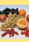 Gesund Essen - Gesund Leben! - Seite 2
