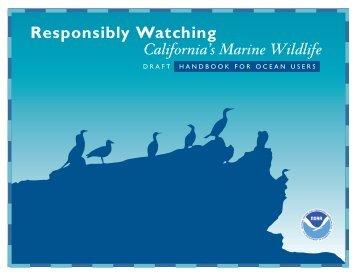 Responsibly Watching California's Marine Wildlife - National Ocean ...