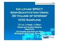 Ioflupane SPECT Semi-Quantitation Using Quantitation Using 3D ...