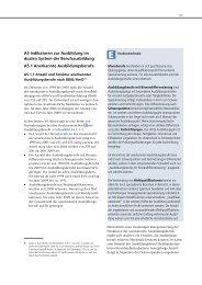 A5 Indikatoren zur Ausbildung im dualen System der - BIBB ...