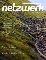 Netzwerk 2009 ⁄ 1