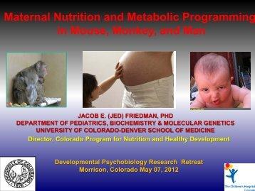 Presentation - University of Colorado Denver