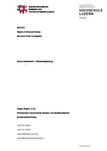 Skript zur Vorlesung an der Hochschule Luzern - Wagner-Joos ...