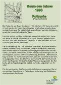 Der Weg der Jahresbäume - Aaseepark Münster - Page 4