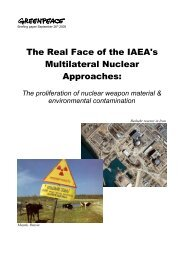 The IAEA's Pellaud report