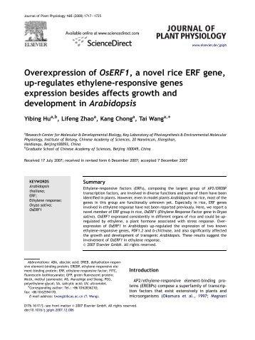 a novel rice ERF gene, up-regulates ethylene-responsive genes ...