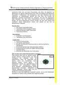 Umstellung einer funktionsorientierten (Aufbau-) - Seite 6
