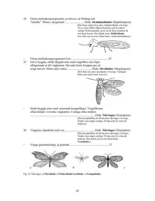 Könsmogen insekt
