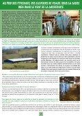 nouvelles breves - Veau sous la Mère - Page 2