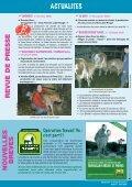 nouvelles breves - Veau sous la Mère - Page 6