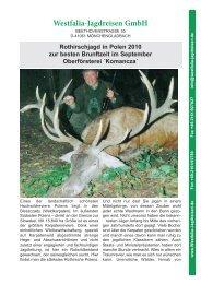 Rothirschjagd in Polen 2010 zur besten Brunftzeit im September ...