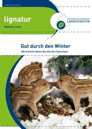 Ausgabe 06/Jahrgang 2010 - Schleswig-Holsteinische Landesforsten