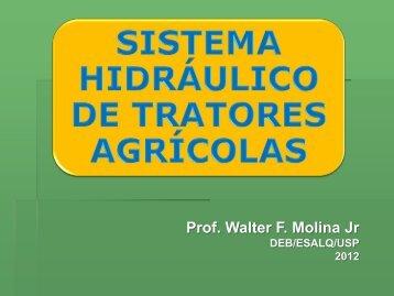 Prof. Walter F. Molina Jr - USP