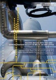 feeding biogas into the grid - Energiesysteme der Zukunft