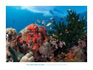 the CORAL ReeF ALLIANCe   International Year of the Reef 2008
