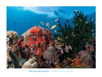 the CORAL ReeF ALLIANCe | International Year of the Reef 2008
