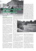 Fangstatistik - Bergedorfer Anglerverein - Seite 5