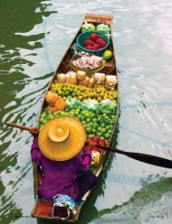 Flavours of Thailand - FehrWay Tours