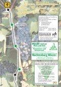 Wachtenburg WinzerE - Pfalz-Touristik - Seite 4