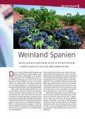 Die Weine - Wein aus Spanien - Seite 7