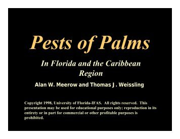 Pests of Palms - University of Florida