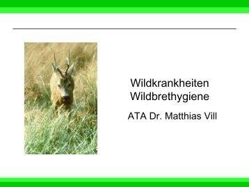 Wildkrankheiten und Wildfleischuntersuchung
