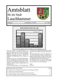 Ende des Amtsteils - Stadt Lauchhammer